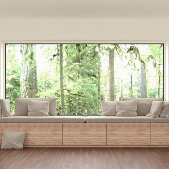 Let Light Be Your Guide When Framing Windows